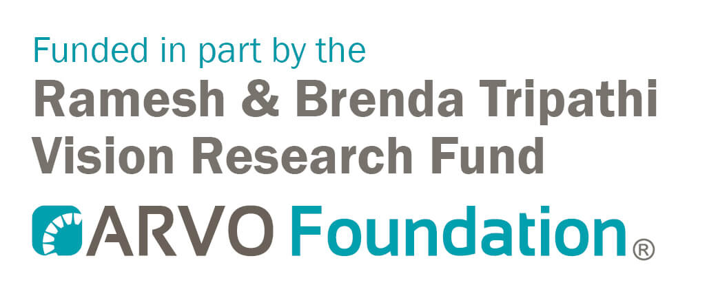 funded by the Ramesh and Brenda Tripathi Vision Research Fund